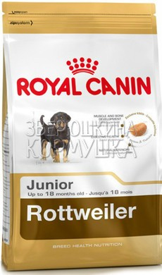 Royal Canin Rottweiler Junior 31